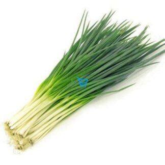 Spring Onion / Scallion / Dahon Sibuyas